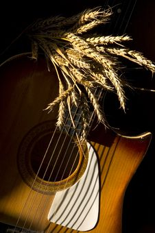 Free Wheat And Guitar Royalty Free Stock Photo - 343145