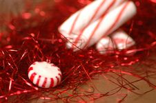 Free Christmas Peppermint Candy Stock Images - 346834