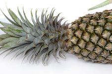 Free Pine Apple Stock Photography - 347012