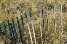 Storm Fence In Marsh Grass Royalty Free Stock Images