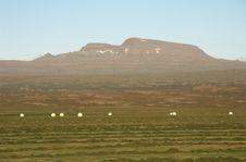 Free Iceland Royalty Free Stock Image - 348806