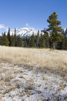 Free Mountain Meadow Stock Images - 349134