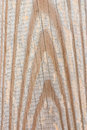 Free Wood Texture Royalty Free Stock Photo - 3403755