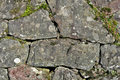 Free Moss Covered Rock Wall Stock Photography - 3409162