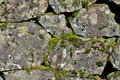 Free Moss Covered Rock Wall Stock Images - 3409174