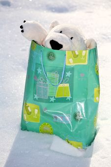 Free Teddy Bear In The Bag Stock Photo - 3401340