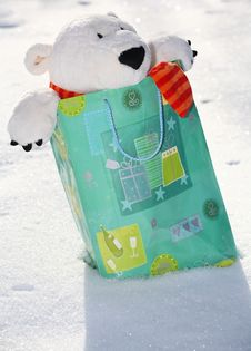 Free Teddy Bear In The Bag Royalty Free Stock Images - 3401469