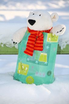 Free Teddy Bear In The Bag Royalty Free Stock Photo - 3401555