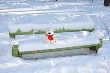 Free Teddy Bear On The Bench Stock Images - 3401574