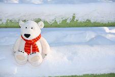Teddy Bear On The Bench Stock Photos