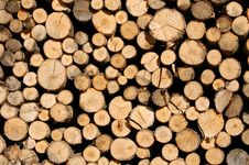 Free Chopped Wood Stock Photo - 3401670