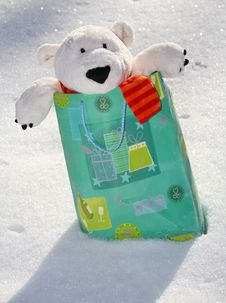 Free Teddy Bear In The Bag Stock Image - 3401871