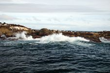 Seal Island And Wave Splash Royalty Free Stock Photography