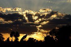 Free Evening Sunset Royalty Free Stock Photo - 3404145