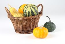 Free Mini Pumkins Stock Photos - 3404773