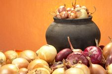 Free Onions Royalty Free Stock Photography - 3405437