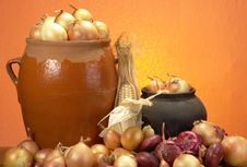 Free Onions Royalty Free Stock Image - 3405446