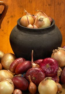 Free Onions Stock Images - 3405464