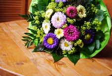 Free Aster Bouquet Royalty Free Stock Photo - 3407465