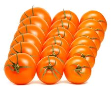 Red Tomato Array Royalty Free Stock Images