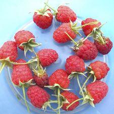 Free Raspberry Stock Photo - 3408630
