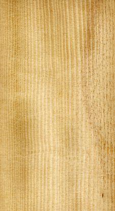 Free Yellow Pine Stock Image - 3409061