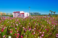 Free The Pink Building And Flowers Stock Photos - 34000573