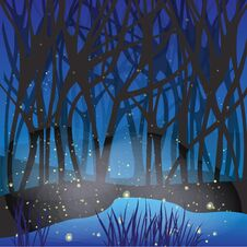 Free Night Magic Scene With Fireflies. Royalty Free Stock Photography - 34004017