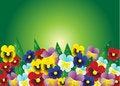 Free Flowers. Royalty Free Stock Photos - 34016538
