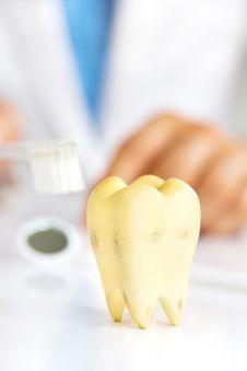 Free Dental Hygiene Concept Stock Image - 34028851