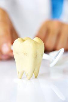 Free Dental Hygiene Concept Stock Images - 34029004