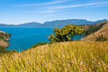 Free Grass Field With An Ocean And An Island In The Horizon. Royalty Free Stock Image - 34074266