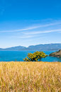 Free Grass Field With An Ocean And An Island In The Horizon. Royalty Free Stock Photos - 34074288