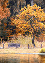 Free Autumn In The Park Royalty Free Stock Images - 34078529