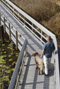 Free Man And Dog On Boardwalk In Wetland Royalty Free Stock Photos - 34078998