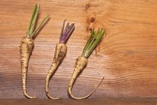 Free Home Grown Vegetables Royalty Free Stock Images - 34071219
