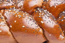 Free Loaf Of Bread With Seeds Royalty Free Stock Photo - 34076355