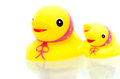 Free Yellow Rubber Duckies Stock Photography - 34092472