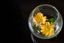 Free Yellow Flowers In Glass Bowl Royalty Free Stock Photography - 34092787