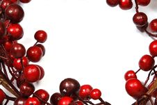 Free Christmas Decoration From Red Berries Stock Images - 34094944