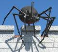 Free Arachnophobia Stock Photos - 3412383