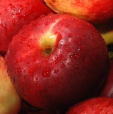 Free Red Apple Royalty Free Stock Photography - 3410327