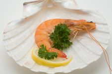 Free Decorated Shrimp Royalty Free Stock Photos - 3411448