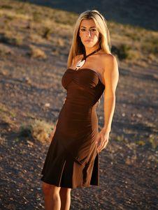 Free Blond Fashion Woman Stock Photography - 3412252