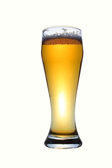Free Barmy Beer Stock Images - 3413944
