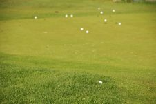 Free Golf Gren - Grass Royalty Free Stock Photo - 3416165