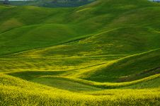 Free Landscape,Tuscany Val D Orcia Stock Images - 3416334