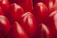 Bell Pepper Red Tile Stock Images