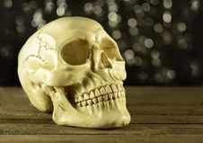Free Human Skull On Glitter Background Royalty Free Stock Image - 34104636