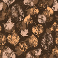 Free Seamless Texture With Stamped Autumn Leaves Stock Photos - 34157613